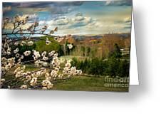 Spring Time Greeting Card by Robert Bales
