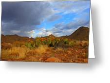 Springtime In Arizona Greeting Card
