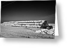 stack of frozen snow covered hay bales in a field Forget Saskatchewan Canada Greeting Card by Joe Fox