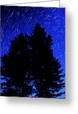 Star Trails In Night Sky Greeting Card