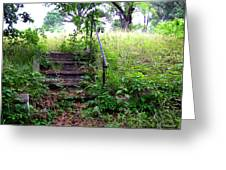 Steps To Yesterday Greeting Card