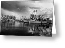 Storm Coming Greeting Card