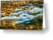 Stream Fall Colors Great Smoky Mountains Painted  Greeting Card