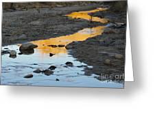 Sunset Reflected In Stream, Arizona Greeting Card