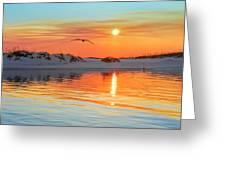 Sunswept Greeting Card
