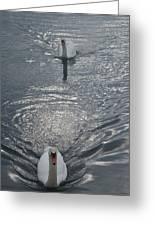 2 Swan Greeting Card