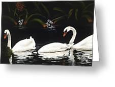 Swans IIi Greeting Card