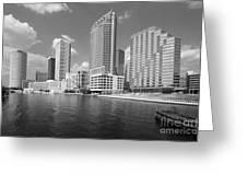 Tampa Skyline From Hillsborough River Greeting Card