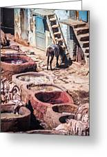 Tannery In Fes Greeting Card