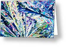 Tartaric Acid Crystals In Polarized Light Greeting Card