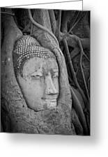 The Ancient City Of Ayutthaya Greeting Card