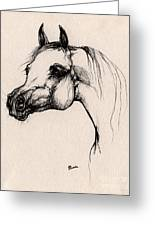 The Arabian Horse Greeting Card