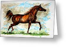The Chestnut Arabian Horse Greeting Card