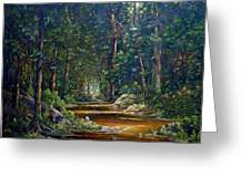 The Light In The Forest Greeting Card