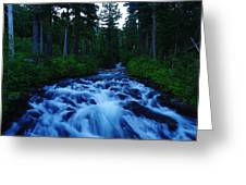The Paradise River Greeting Card