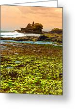 The Tanah Lot Temple - Bali - Indonesia Greeting Card