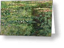 The Waterlily Pond Greeting Card