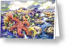 Tidal Pool I Greeting Card by Ann  Nicholson