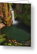 Toketee Falls - Oregon Greeting Card
