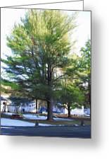 Tree 1 Greeting Card