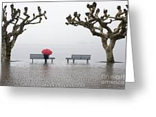 Trees And Benches Greeting Card