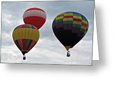 Trio Of Balloons  Greeting Card