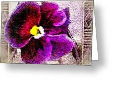 Vibrant Violet  Greeting Card