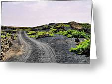 Vineyard On Lanzarote Greeting Card
