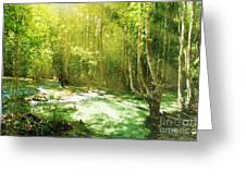 Waterfall In Rainforest Greeting Card