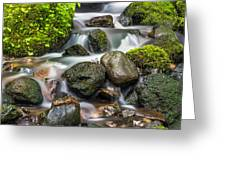 Waterfall Mount Rainier National Park Greeting Card