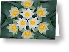 Waterlily Mandala Greeting Card