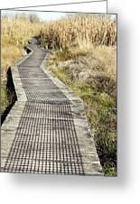 Wetland Walk Greeting Card