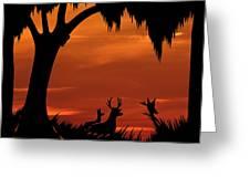 Wetland Wildlife - Sunset Sky Greeting Card