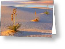 White Sands National Monument Greeting Card