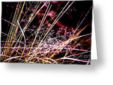 Wild Grasses Abstract Greeting Card