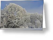 Winter In Oregon Greeting Card