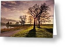 Winter Morning Shadows / Maynooth Greeting Card