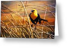 Yellow - Headed Blackbird Greeting Card