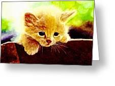 Yellow Kitten Greeting Card