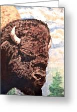 Young Bull At Yellowstone Greeting Card