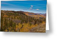 Yukon Gold - Fall In Yukon Territory Canada Greeting Card
