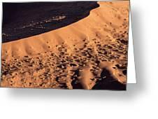 Africa, Namibia, Namib-naukluft Park Greeting Card