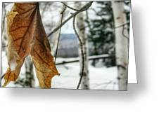 The Keweenaw's Message- Will You Listen? Greeting Card