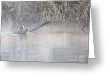 Northern River Otter Greeting Card