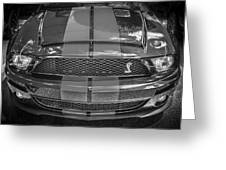 2007 Ford Shelby Gt 500 Mustang Bw Greeting Card