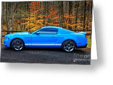 2010 Shelby Gt500 Greeting Card
