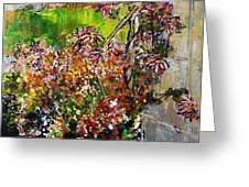 2012 119 Daisies Butterfly Garden United States Botanic Garden Washington Dc Greeting Card