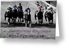 2014 Preakness Greeting Card