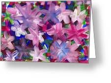 2014 The Firework Flowers 02 Greeting Card