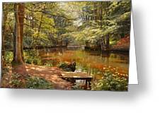 Glimpses Of The Sunby Stream Greeting Card